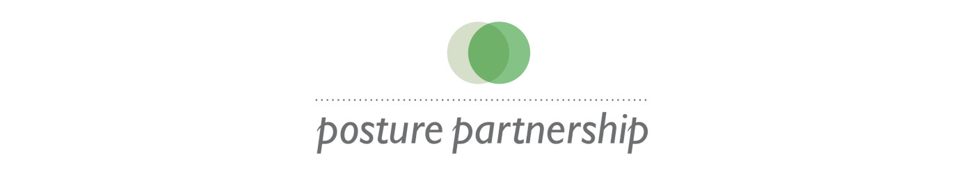 Posture Partnership